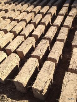 Mud bricks drying in the sun