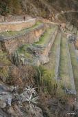 Ollantaytambo terraces